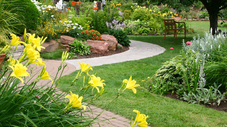 lush gardens, drought resisitent lawns and garden areas are wright landscape's specialty as well as synthetic lawns, rain capture and special accents fore your lawn, garden, pool area and more